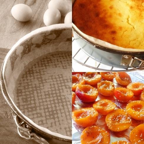 drie fotos vir intro collage pan en appelkose en klaarkoek