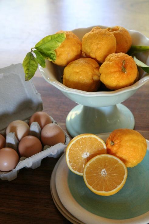 Suurlemoene, lemoene en Spier-eiers reg vir bak van Japie se Gunsteling.