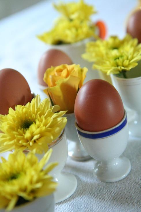 aaa eiers