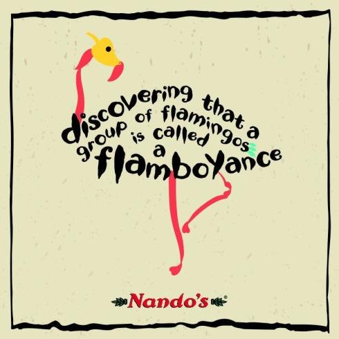 Vlammend flambojant  - hoe slim is hierdie ouens van Nando's nie.